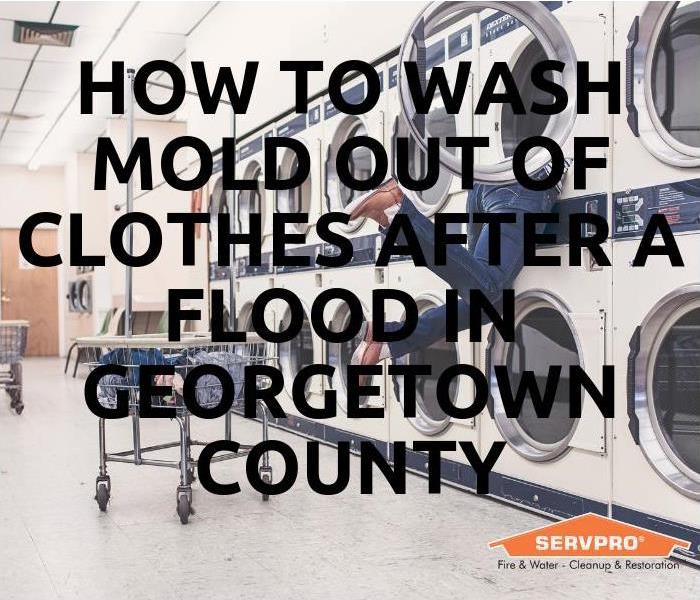 Mold Remediation How To Wash Mold Out Of Clothes After Flooding In Georgetown County