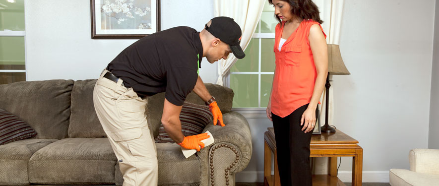 Murrells Inlet, SC carpet upholstery cleaning